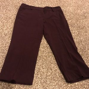 New York and Company Maroon Cropped Pants